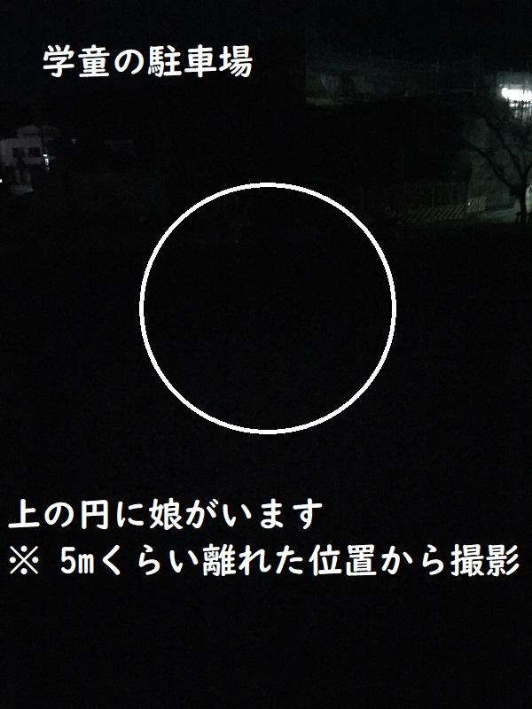 f:id:Alstroemeria:20190109185543j:plain