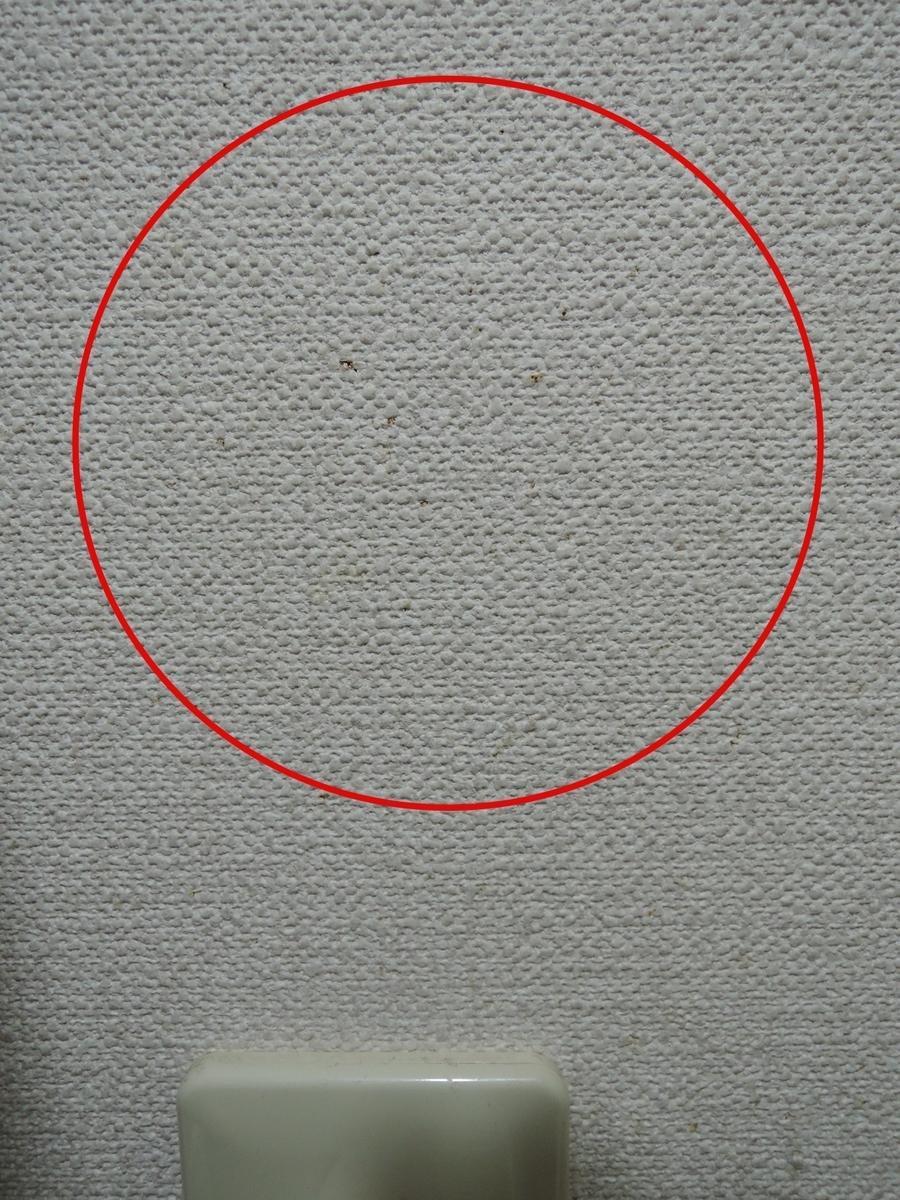 f:id:AmaHana:20201021234743j:plain