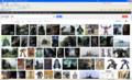 [Google][search][image][language]Googleで「金剛」を画像検索; 米国匿名プロキシ、言語設定英語