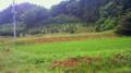 田舎での日常風景