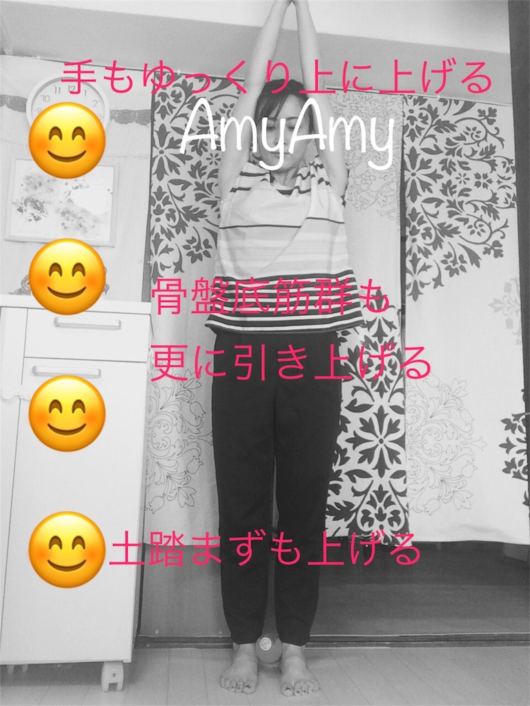 f:id:AmyAmy:20190620094453j:image
