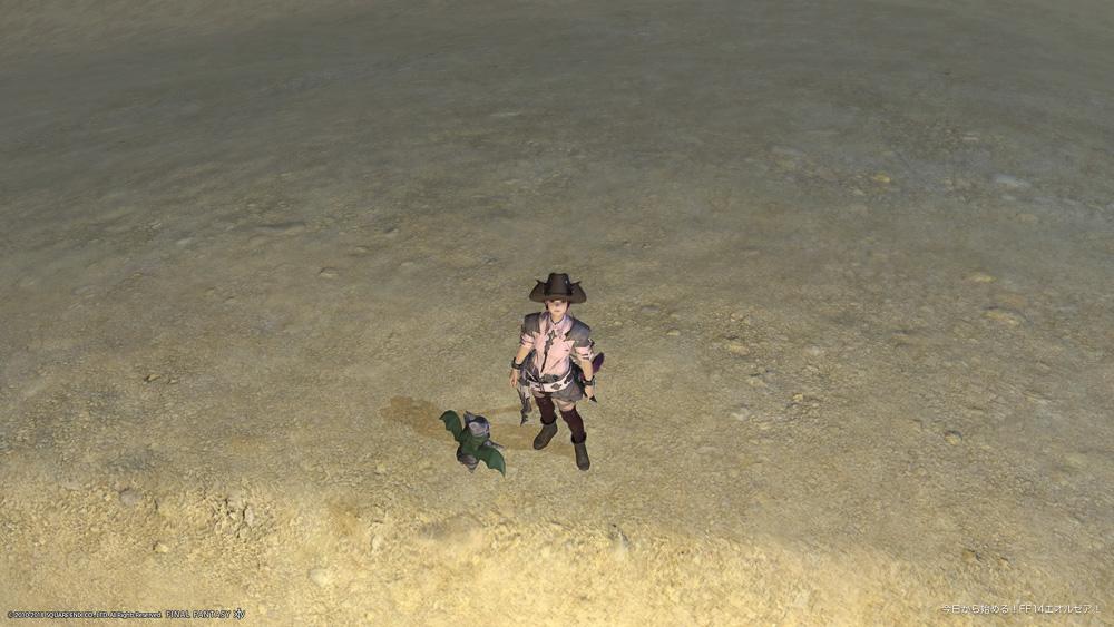 再び視線を送りを有効にした事で、キャラクターは現在のカメラ位置に視線を向けた。