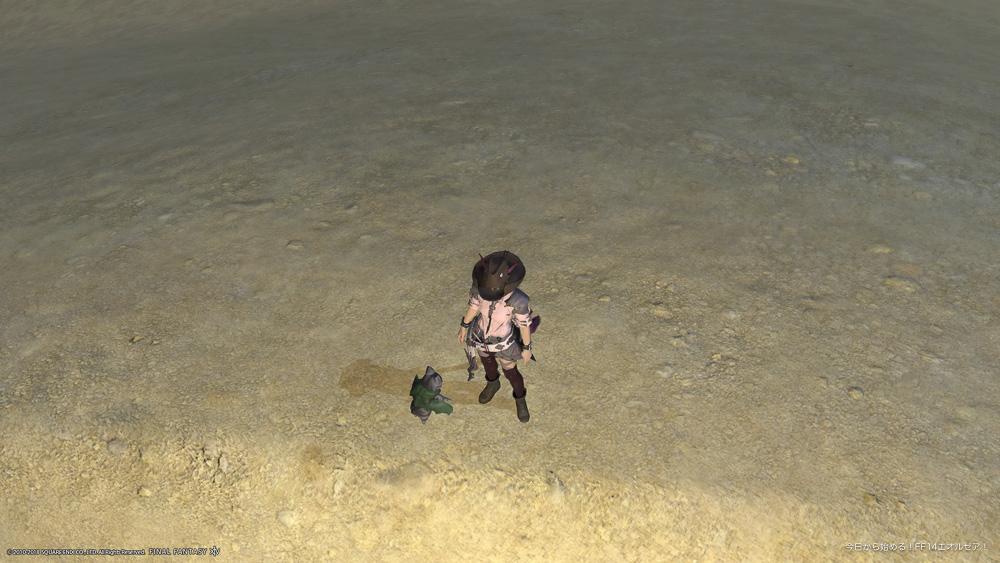 視線送りを解除した事で、キャラクターの視線はキャラ自身の正面に向いた。