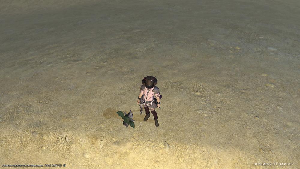 キャラクターを上方向から見下ろして撮影したスクリーンショット。