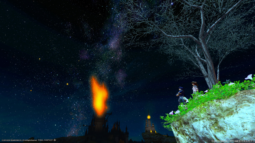 崖の上で、ヒューランとミコッテが2人で満天の星空を眺めている。(FF14)