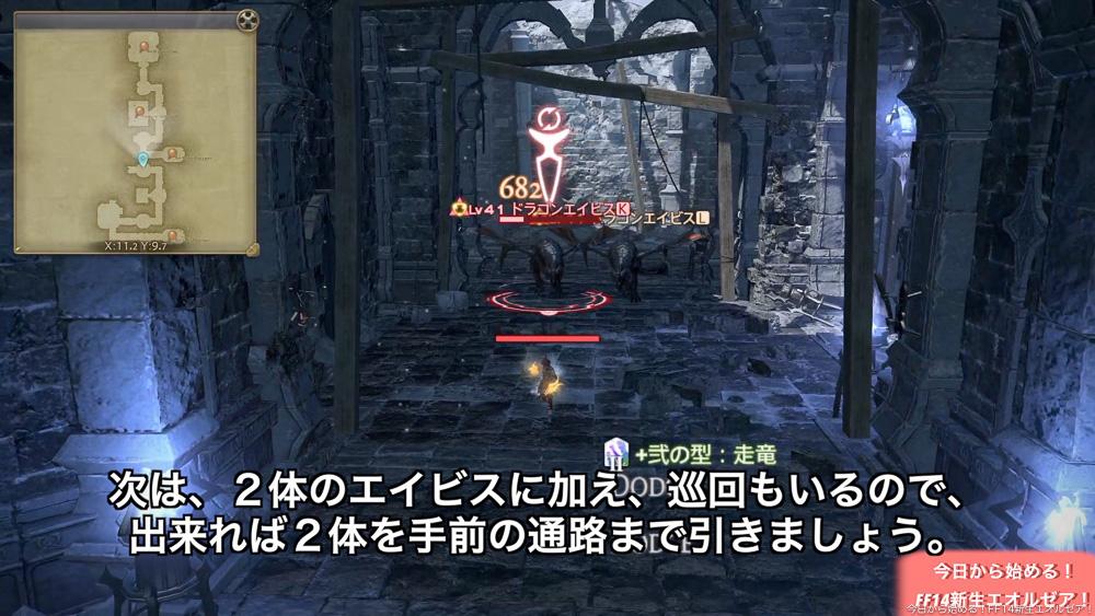 初心者向けストーンヴィジル攻略。画像は、二体のエイビスを手前の通路に引いている所。(FF14)