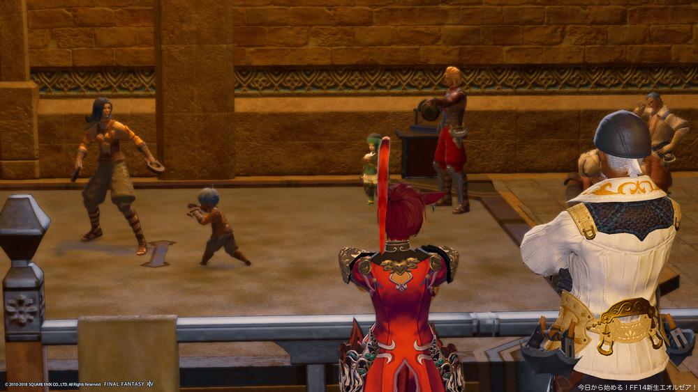 格闘士ギルドで撮影したスクリーンショット。拳聖ハモンと、モンクのミコッテが後ろ向きで写っている。(FF14)