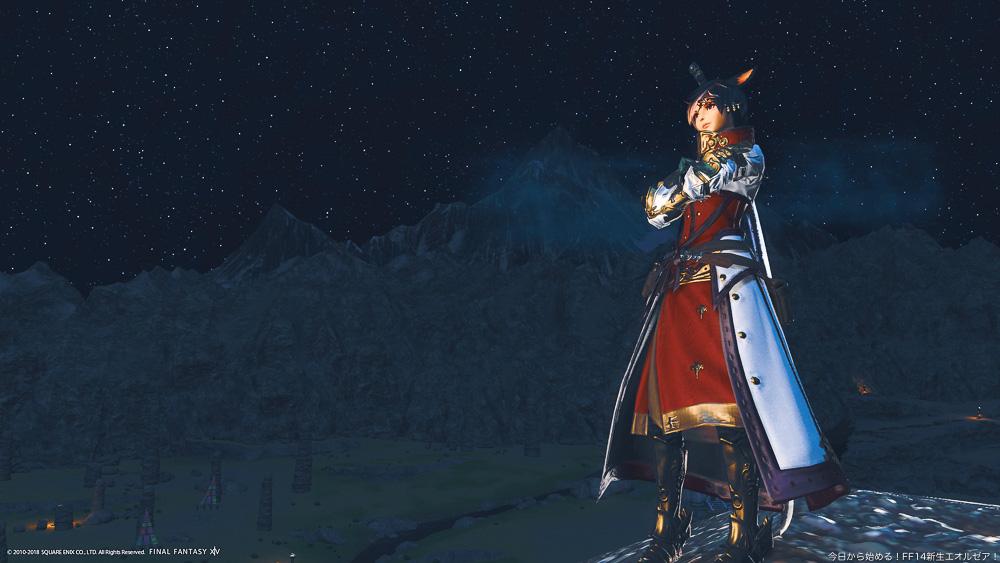 水没機構の騎士コーデ姿の暗黒騎士のミコッテ。星空を背景に腕組みをして立っている。(FF14)