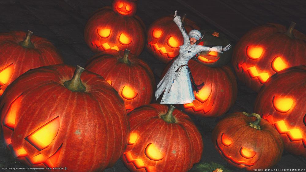 シーズナルイベント「守護天節」のイベント会場で、大量のかぼちゃに囲まれてポーズをとっているミコッテ。(FF14)