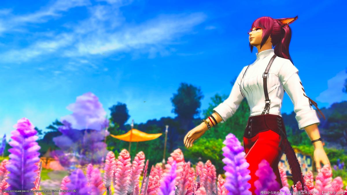 よく晴れたラベンダーベットの花畑を散歩するミコッテ女性(アキナ)。青空と花々が写っている。(FF14)