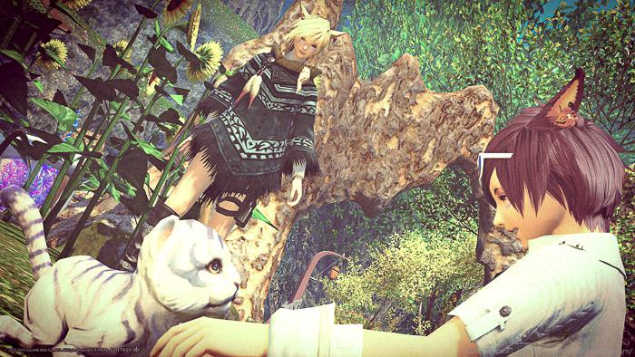 ミニオンである小虎を見つめる二人のミコッテ。(FF14)