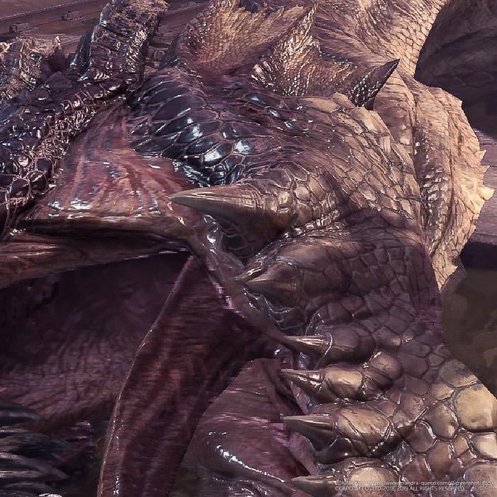 ミラボレアスの下顎部分のアップ
