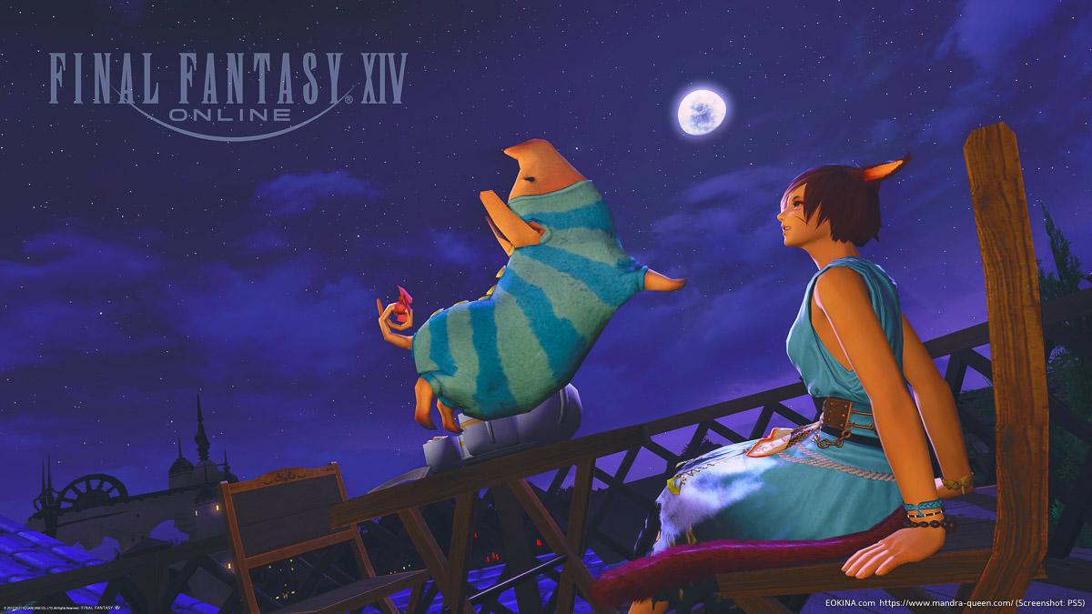 ミストヴィレッジの夜空と月、ミコッテとプーギー