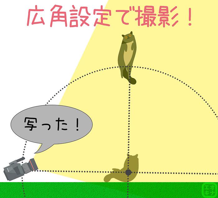 グルポのカメラ調整機能を使って広角設定にすることで、撮影範囲が広がることを表した図