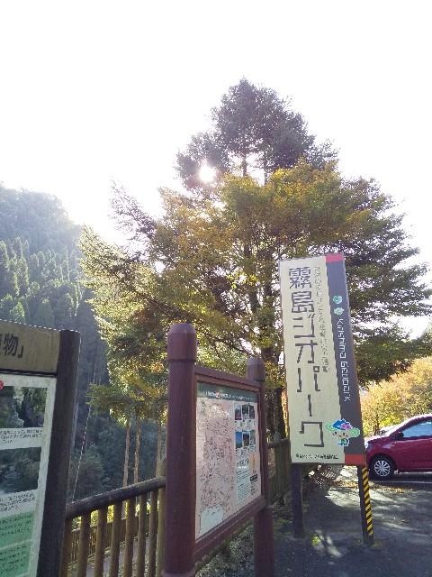 f:id:Aoi20140626:20191120075859j:image
