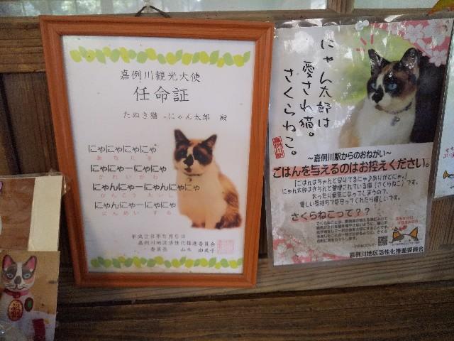 f:id:Aoi20140626:20191227201121j:image