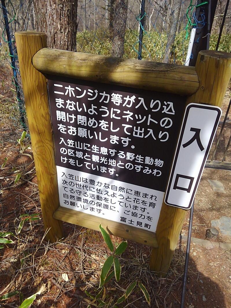 f:id:Aoituki:20190511231014j:plain