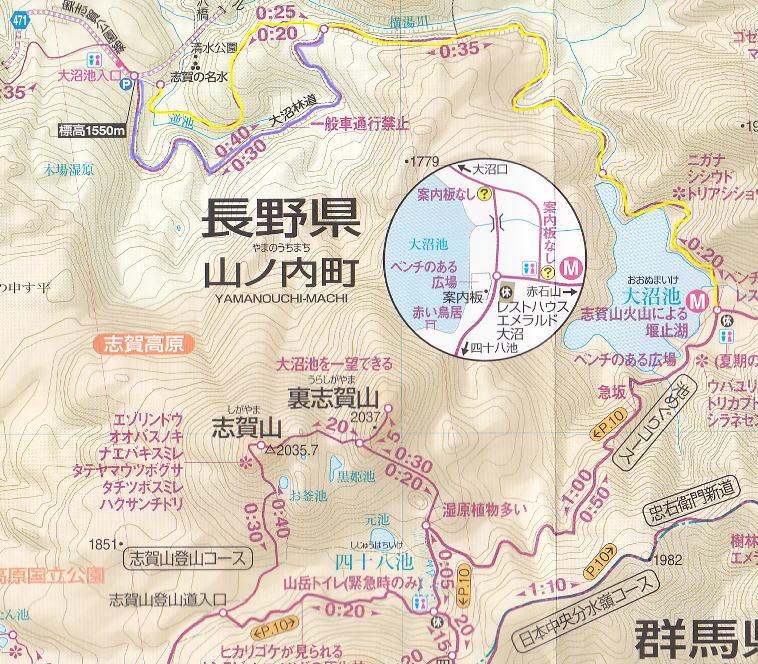 f:id:Aoituki:20190627215400j:plain