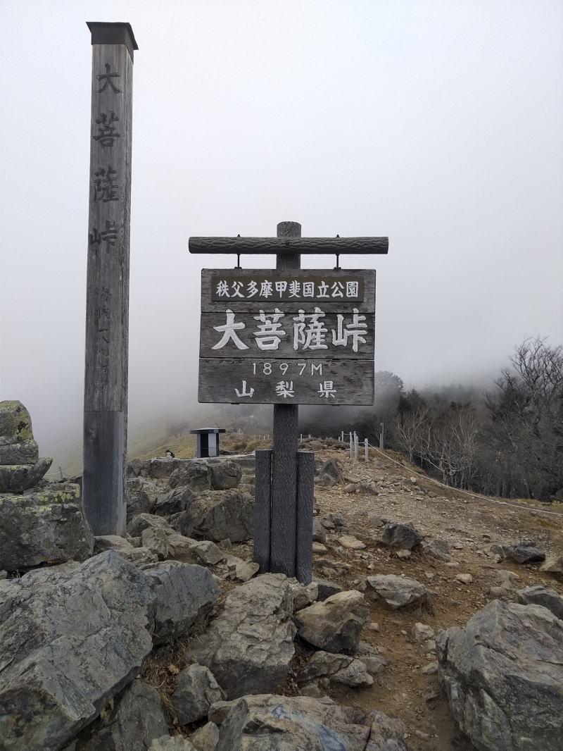 f:id:Aoituki:20191118184648j:plain