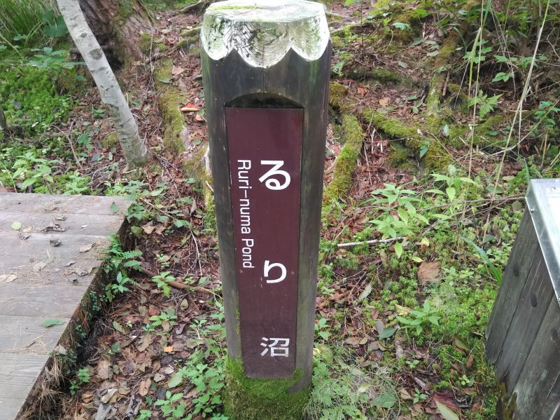 f:id:Aoituki:20200924192854j:plain