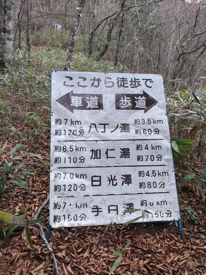 f:id:Aoituki:20201130205252j:plain