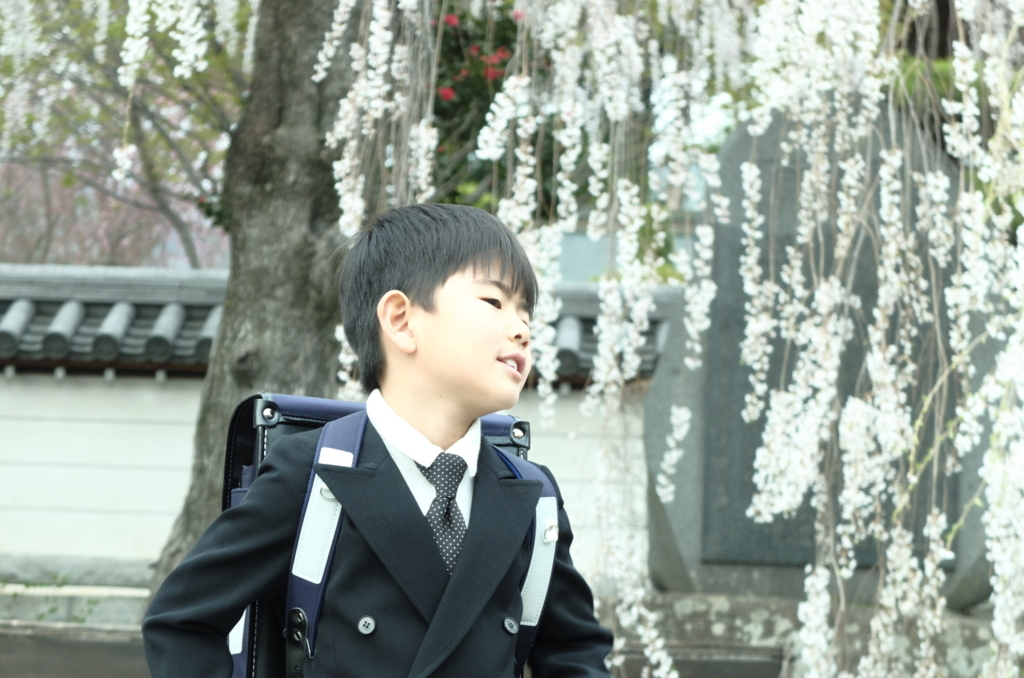 f:id:Aozora100:20180527092431j:plain