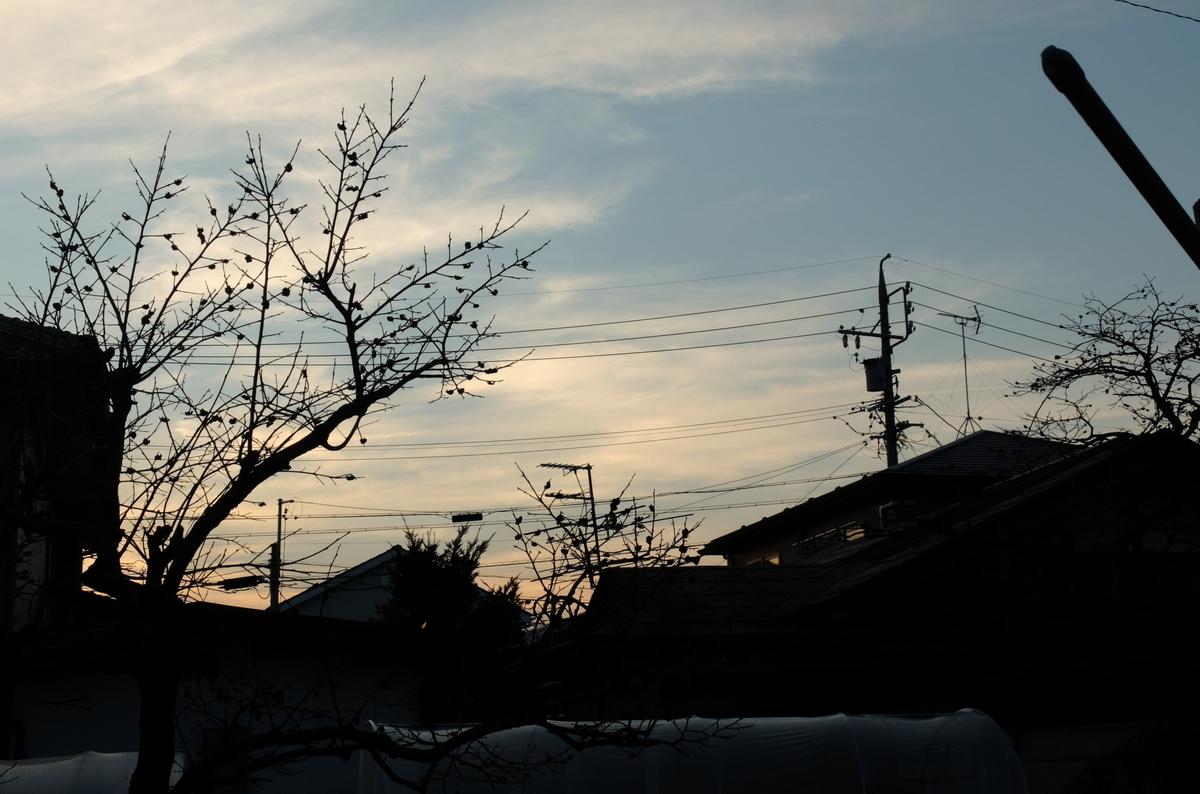 f:id:Aozora100:20190415204727j:plain