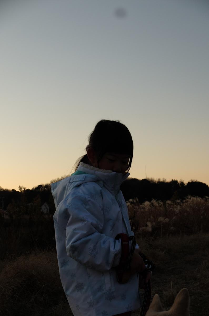 f:id:Aozora100:20200329210348j:plain