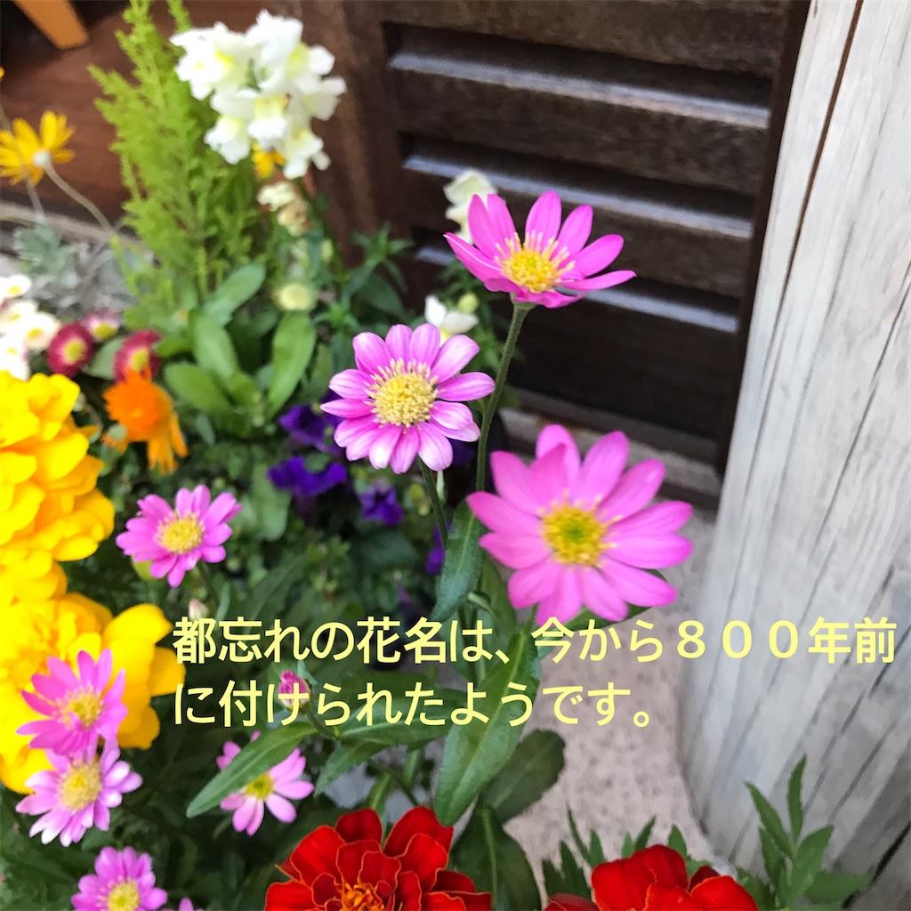 f:id:Aplaudo:20210425173931j:image
