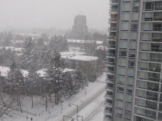 バンクーバー 雪