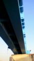 [建造物]豊洲大橋