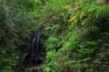 [滝][福井]柳の滝 夫婦滝