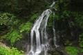 [滝][群馬]白水滝