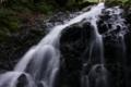 [滝][東京]シダクラ沢の滝