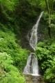 [滝][東京]オリゾクナイ沢 大滝