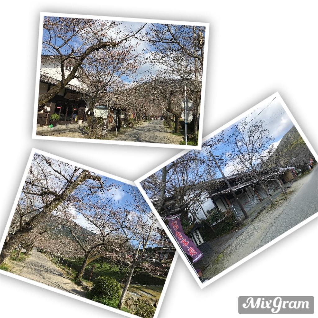 f:id:Asakurakun:20200323123557j:image