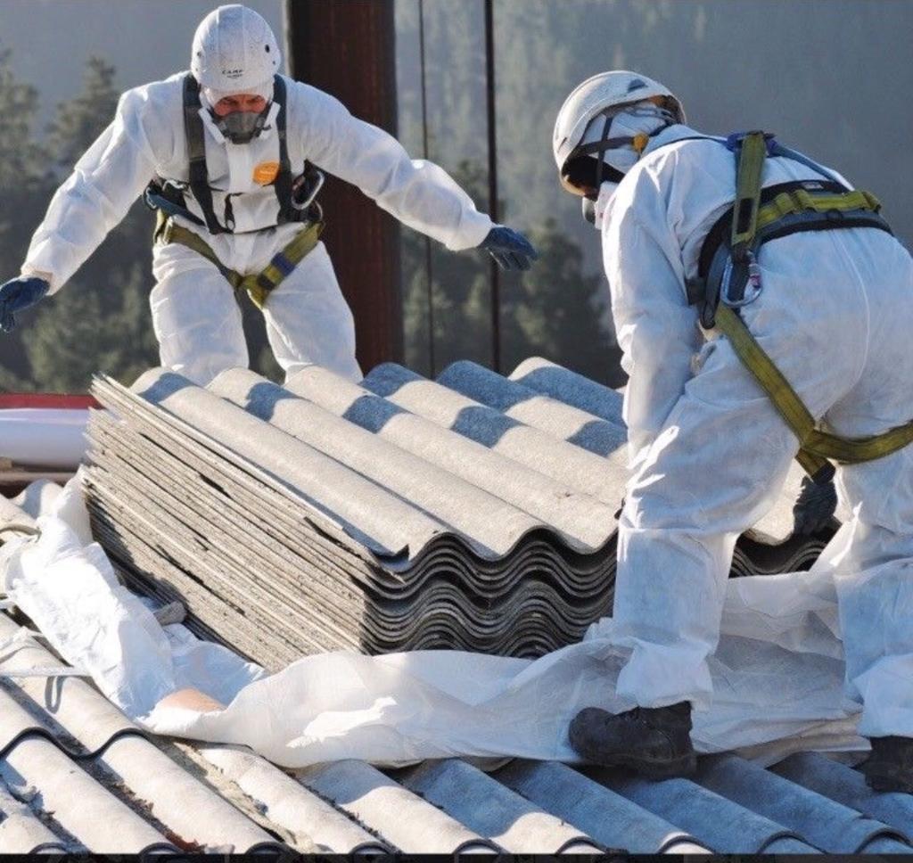 f:id:AsbestosRemovalSydney715:20190112164018j:plain