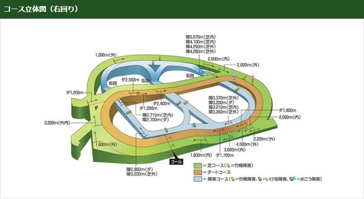 中山競馬場コース立体図(右回り)