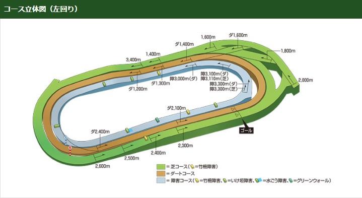 東京競馬場コース立体図(左回り)