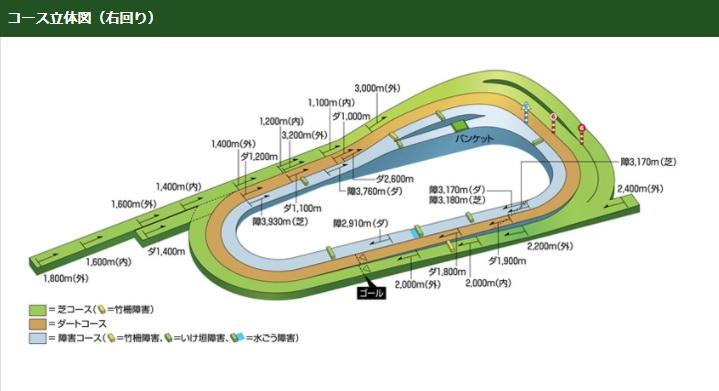 京都競馬場コース立体図(右回り)
