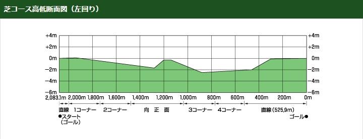 東京競馬場芝コース高低断面図立体図(左回り)