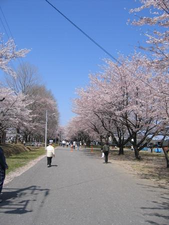 桜熊谷基地