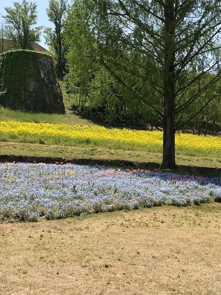 f:id:Atelier-sunflower:20190503165650j:image
