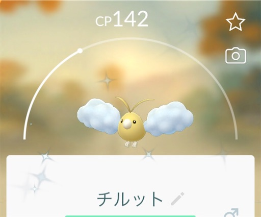 f:id:Atelier-sunflower:20210517233522j:image