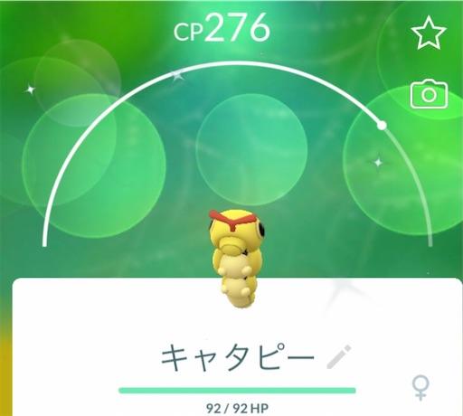 f:id:Atelier-sunflower:20210917183316j:image
