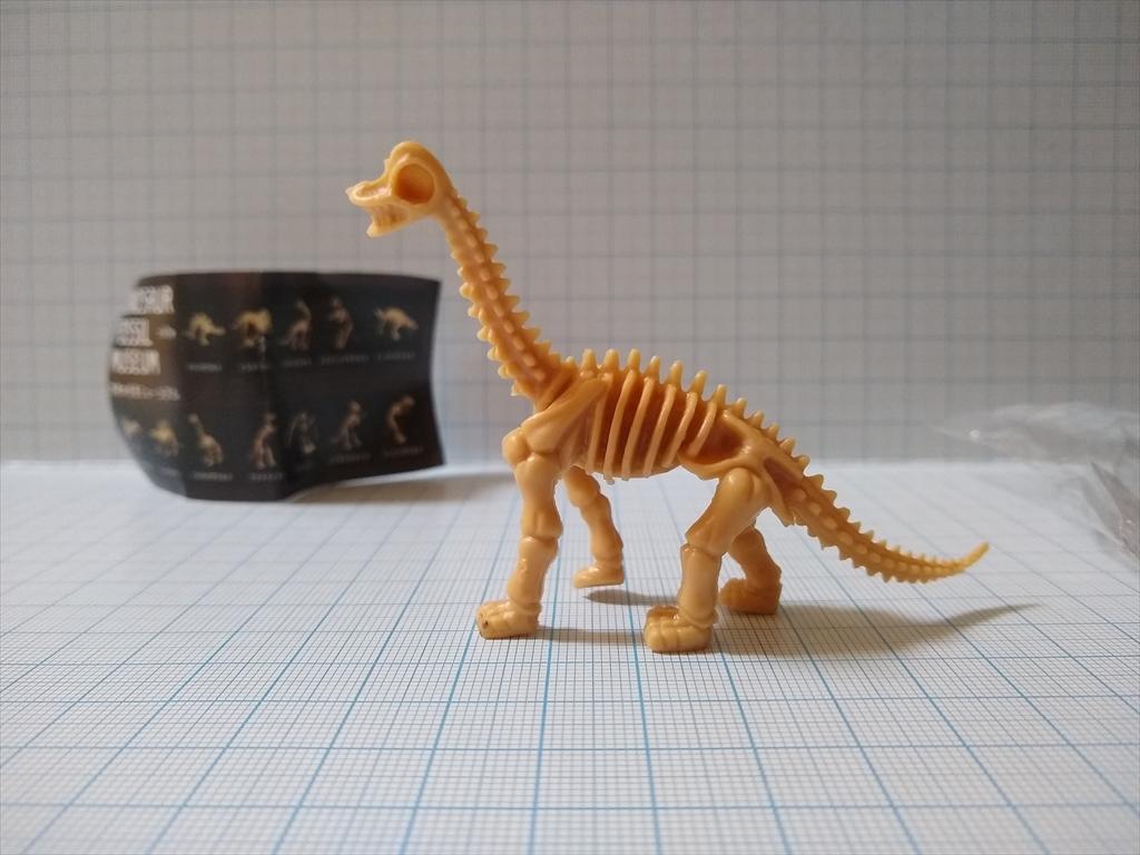 カプセルトイ 恐竜の化石ミュージアム ブラキオサウルス(レビュー)の画像1