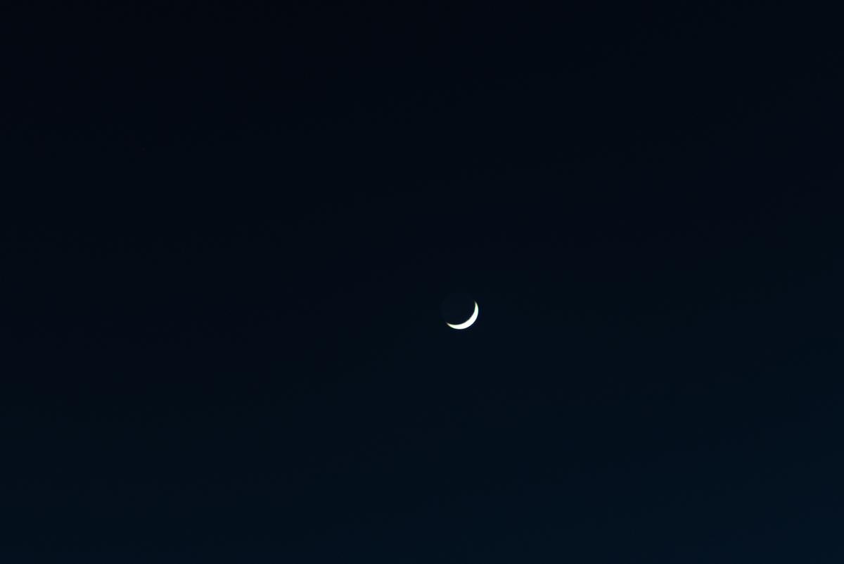 f:id:Atsuzo-SUN:20210116203026j:plain