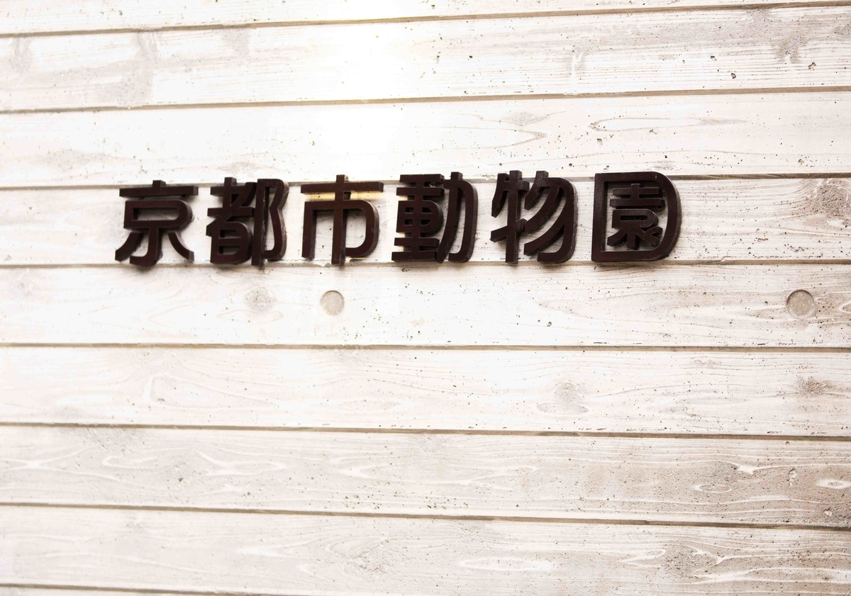 f:id:Atsuzo-SUN:20210119170346j:plain