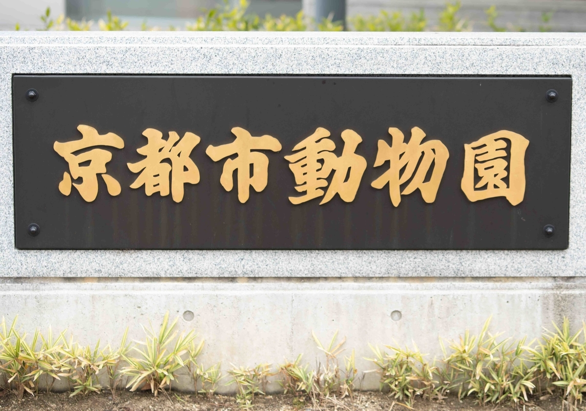 f:id:Atsuzo-SUN:20210119170359j:plain