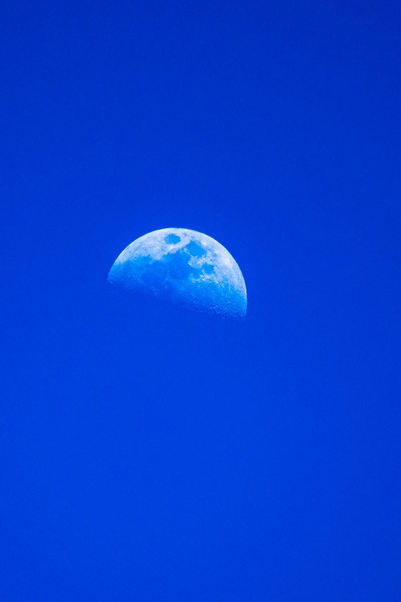 f:id:Atsuzo-SUN:20210121165618j:plain